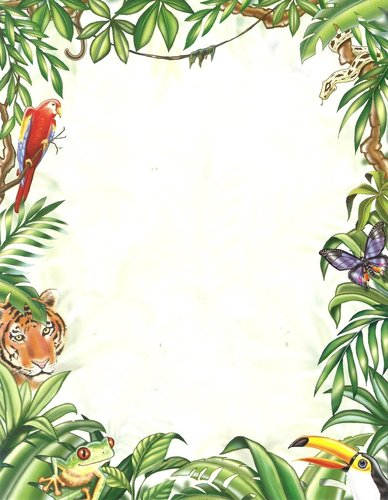 Briefpapier Rain Forest Paper Direct