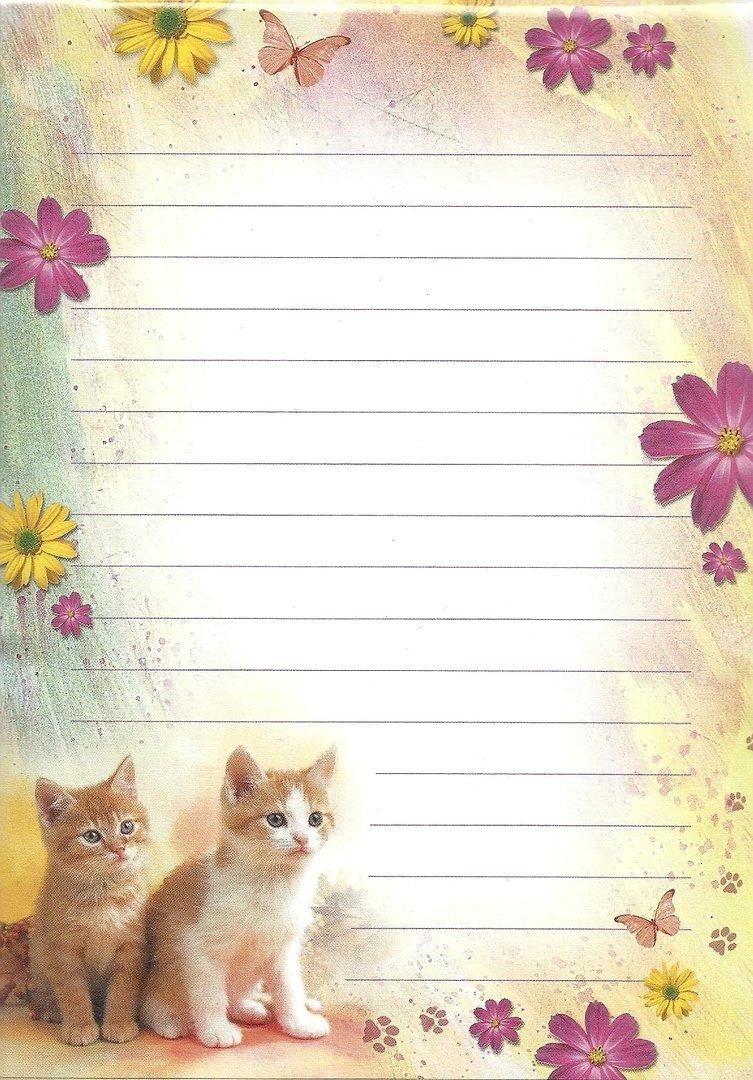 briefpapier set a5 kätzchen liniert doreens briefpapierwelt