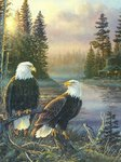 Card 2 Eagles Leanin Tree